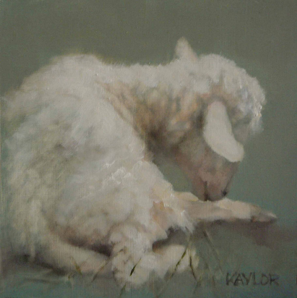 Deb Kaylor, Little Lamb, oil, 6 x 6.