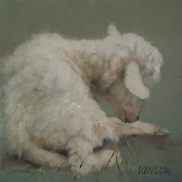 Deb Kaylor, Little Lamb, oil, 6 x 6.