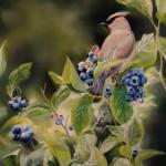 Kimberly Wurster, Bumper Crop, pastel, 20 x 16.