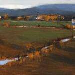 Romona Youngquist, Long Shadows, oil, 10 x 18.