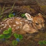 Karla Mann, Bambi, oil, 11 x 14.