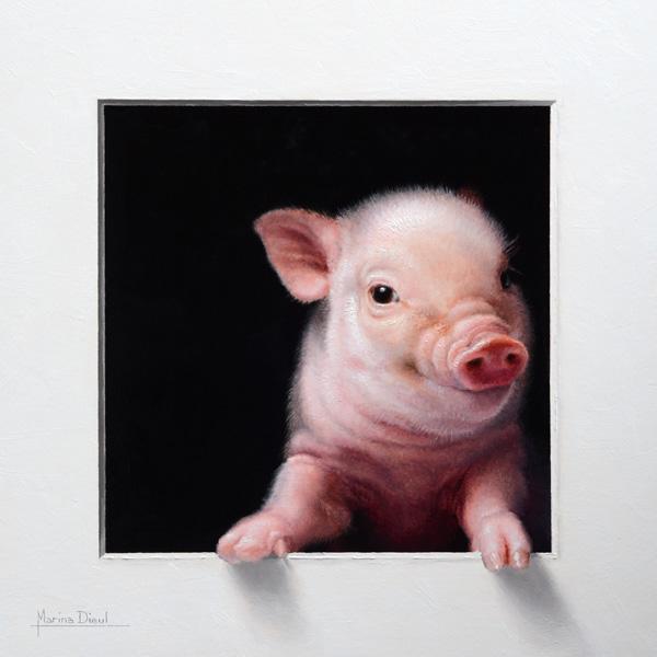 Marina Dieul, Cochon 1, oil, 12 x 12.