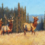 Mark McKenna, Wapiti Sunrise, oil, 30 x 48.