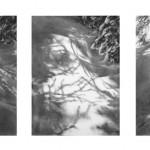 Robin Cole Smith, Penumbra VIII, IX, X, charcoal, 8 x 8 each.