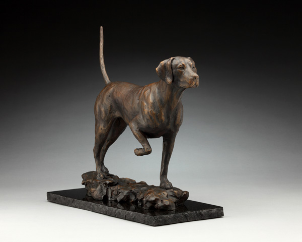 Daniel Glanz, English Pointer , bronze, 17 x 19 x 7.5.