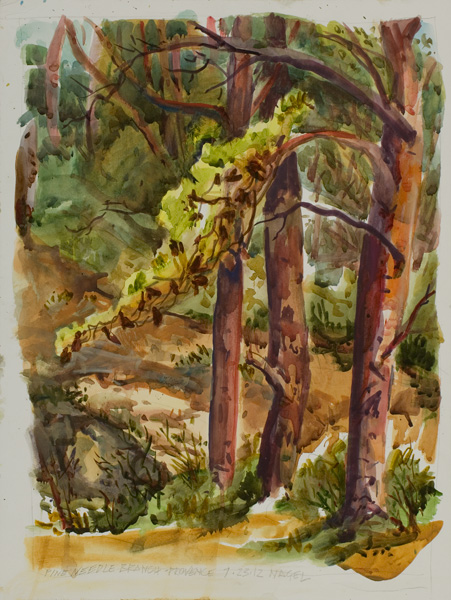 Ralph Nagel, Pine Needle Branch, Provence, watercolor, 24 x 18.