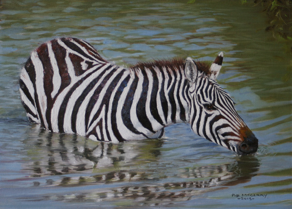 Pip McGarry, Zebra in Water, Kenya, oil, 9 x 12.