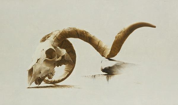 Vincent Natale, Ram Skull, oil, 11 x 20.
