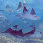 Stanley Meltzoff, Ray 1, Four Eagle Rays, Shark and Permit School, oil, 24 x 36.