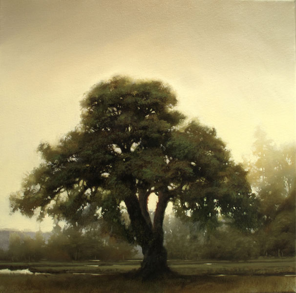 Renato Muccillo | Scots Pine at Dawn, oil, 16 x 16.
