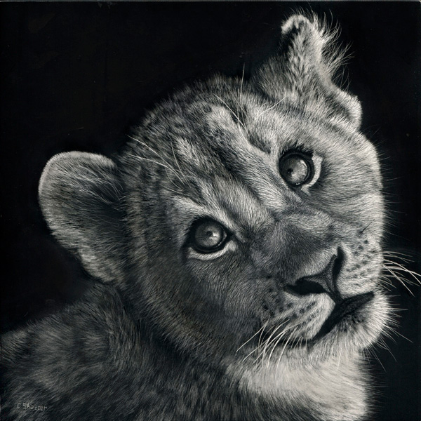 Cathy Sheeter, Dreaming Big, scratchboard, 8 x 8.