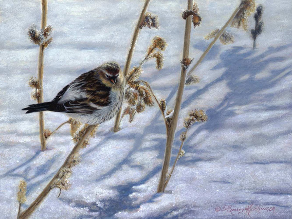 Cindy Sorley-Keichinger, A Touch of Frost, acrylic, 9 x 12.