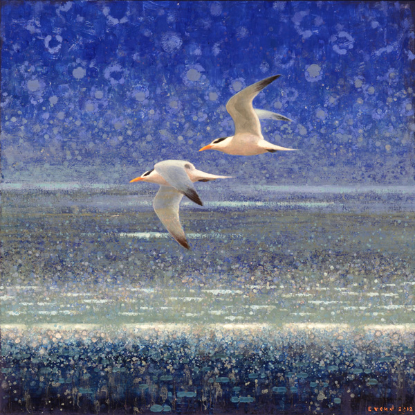 Ewoud de Groot, Terns in Blue, oil, 43 x 43.