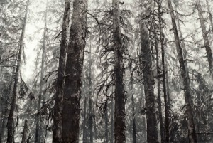 Robin Cole Smith, The Sentinels, encaustic/charcoal, 30 x 45.