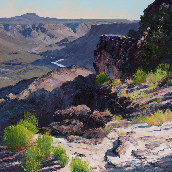 Valley of the Rio Grande, oil, 24 x 24.
