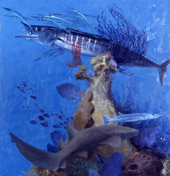 Stanley Meltzoff, Wahoo 4, Wahoo, Cuda and Shark, oil, 32 x 32.