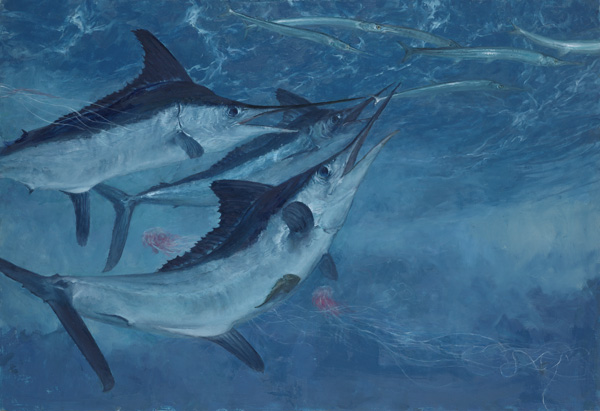 Stanley Meltzoff, White Marlin 7, Three White Marlin and Needlefish, oil, 21 x 32.