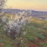 Clyde Aspevig, Wild Plum, Fort Smith, MT, oil, 24 x 30.