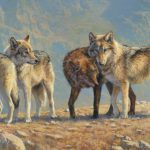 Bonnie Marris, Wolves of the Beartooth, oil, 18 x 36.