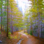 Nancy Wylie, He Walks With Me, pastel, 24 x 36.