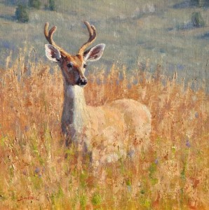 Greg Scheibel, Young Buck, oil plein-air painting