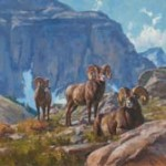 Chad Poppleton | Afternoon Rams, oil, 30 x 32.