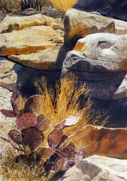Nestled in the Rocks, watercolor, 20 x 14.