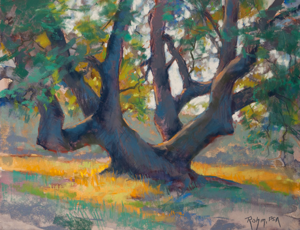 Robert Rohm, Old Growth, pastel, 12 x 16.